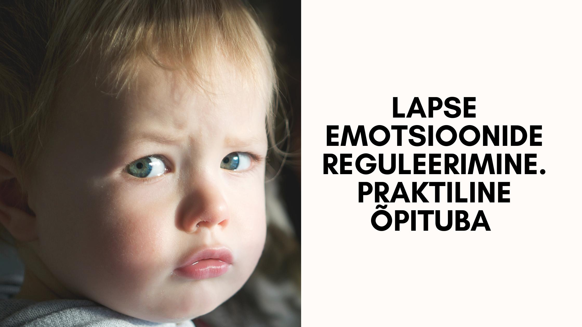 Lapse emotsioonide reguleerimine. Praktiline õpituba.